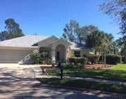 12 Cedar Point Ct, Palm Coast image