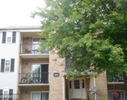 8203 WHISPERING OAKS WAY Unit #203, Gaithersburg image