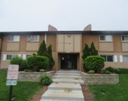 880 East Old Willow Road Unit 284, Prospect Heights image