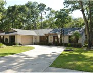 520 Whispering Oak Lane, Apopka image