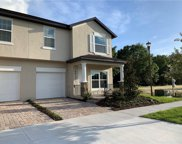 4412 Summer Flowers Place, Kissimmee image