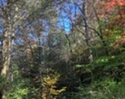 Flea Mountain, Murphy image