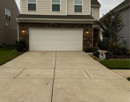 427 Triple Branch  Trail, Fort Mill image
