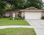 14927 Old Pointe Road, Tampa image