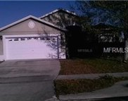 11215 Pinewood Cove Lane, Orlando image