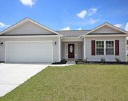 1329 Red Head Ct., Conway image