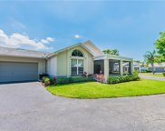 1124 Golfview Woods Drive, Ruskin image