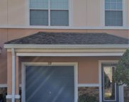 339 SUNSTONE CT, Orange Park image