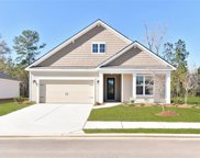 330 Great Harvest Road, Bluffton image