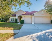 16718 Crested Angus Lane, Spring Hill image