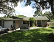 3160 Cypress Green Drive, Palm Harbor image