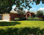 453 Shadow Grass Avenue, Fort Worth image