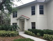 1061 Egrets Walk Cir S Unit 101, Naples image