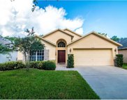 10144 Somersby Drive, Riverview image