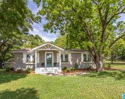 1275 Mineral Springs Rd, Pell City image