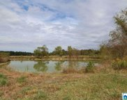 Hwy 411 Unit 110+/- Acres, Ashville image