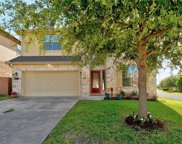 11017 Desert Willow Loop, Austin image