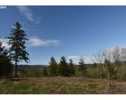 0 NW Burgdofer Rd, North Plains image