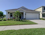 11519 Balintore Drive, Riverview image