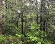 Lot 95 Owls Cove Way, Sevierville image