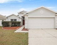 10452 Hunters Haven Boulevard, Riverview image
