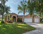 4407 Blantyre Place, Valrico image