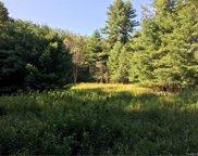 173 Bushville Swan Lake  Road, Ferndale image