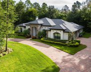 5431 Heritage Pass Circle, Mount Dora image