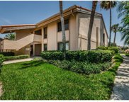 4730 Brittany Drive S Unit 135, St Petersburg image