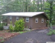 912 Holiday Shores Drive, Scottsboro image