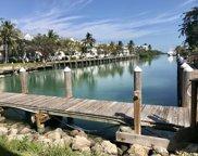 Dock Hawks Cay Boulevard Unit 15, Duck image