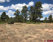 659 Bastille, Pagosa Springs image