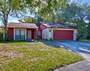 15702 Woodcrafters Place, Tampa image