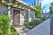 1309 Bottle Brush Ln, San Jose image