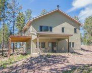 11767 Hartwell Court, Custer image