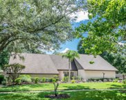 4510 Old Orchard Drive, Tampa image