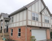 219 Rosehall Drive, Lake Zurich image