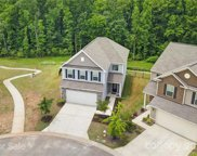 535 Silers Bald  Drive, Fort Mill image