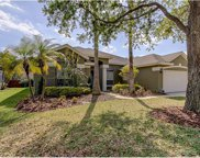 10514 Rochester Way, Tampa image