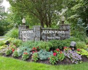 2 Frost Pond  Drive, Roslyn image