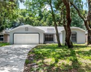 878 W Timberland Trail, Altamonte Springs image