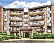501 Lake Hinsdale Drive Unit 308, Willowbrook image
