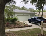 9346 Wellington Park Circle, Tampa image