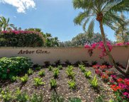 6595 Glen Arbor Way, Naples image