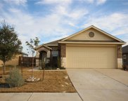 717 Silver Wing Drive, Austin image