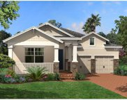 15313 Murcott Harvest Loop, Winter Garden image