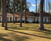 8849 133RD ROAD, Live Oak image