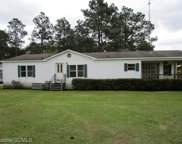 5318 Nate Drive, Wilmer image