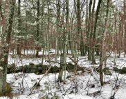 Lot 405-013 Middle Route, Gilmanton image