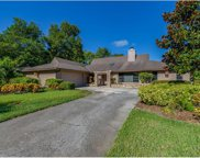 2980 Bridlewood Drive, Palm Harbor image